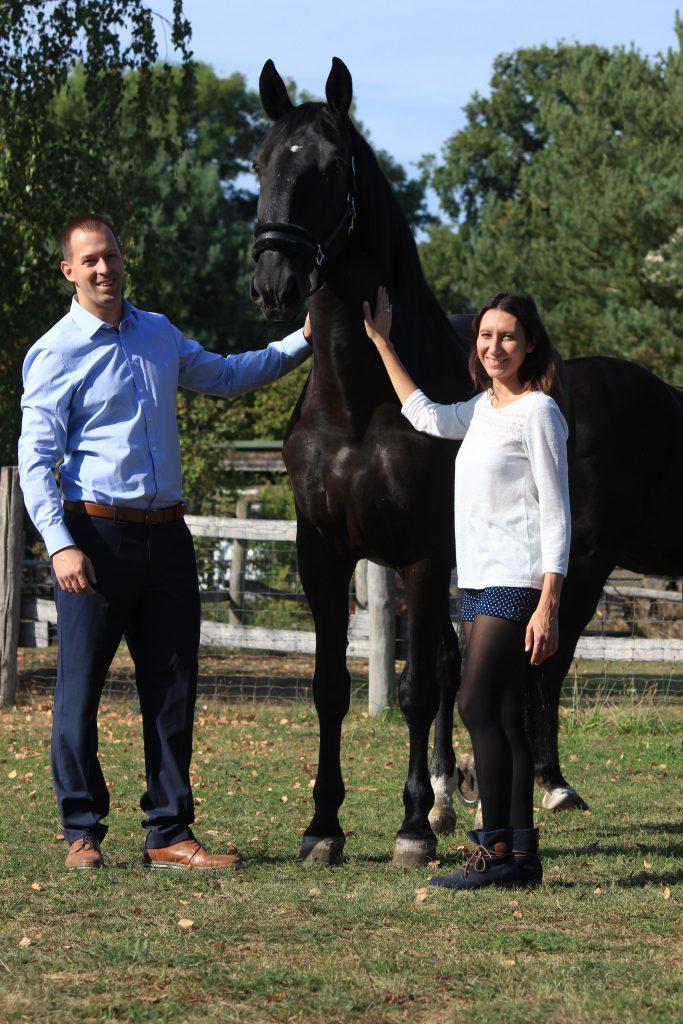 Home - pferdegestütztes Coaching